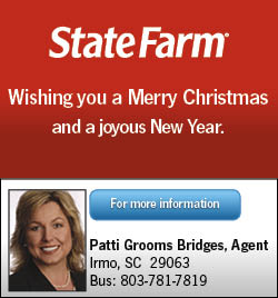 State Farm - Patti Bridges